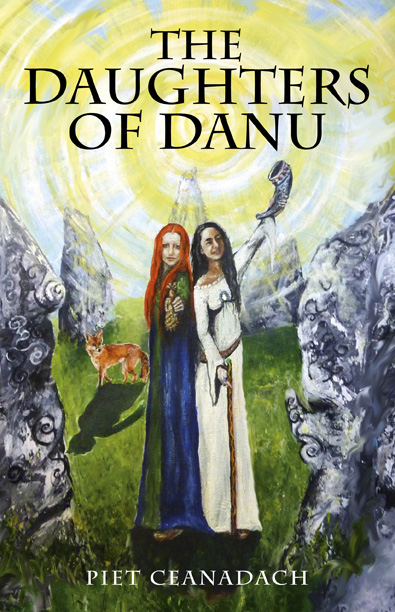 Cover of the book The daughters of Danu