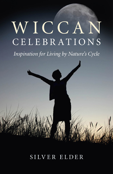 Cover of the book Wiccan celebrations