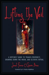 Lifting the Veil book cover