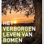 Recensie: Het verborgen leven van bomen